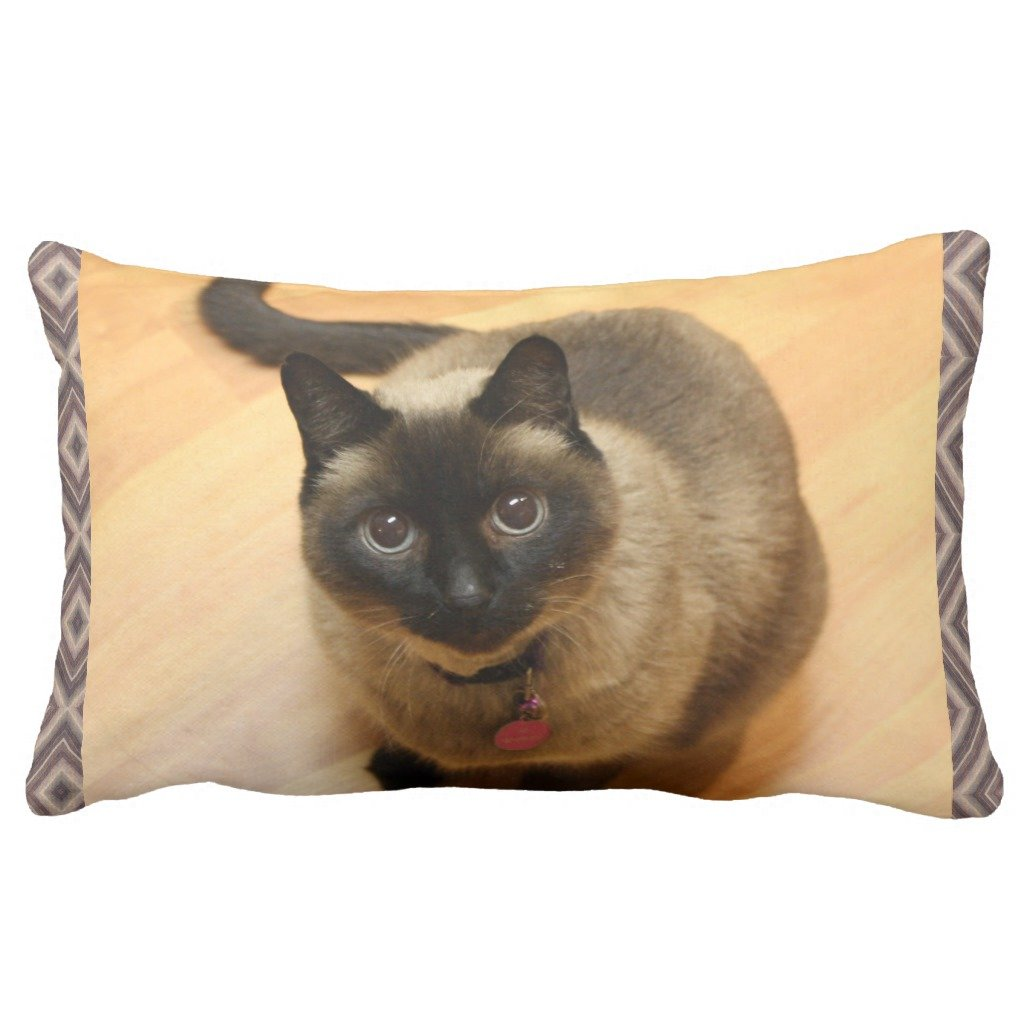 Zazzle Cat Lovers枕 13