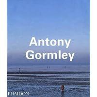 Antony Gormley (Contemporary Artists)
