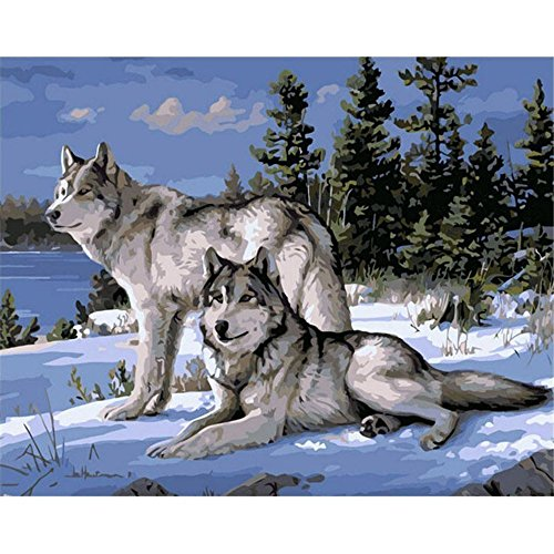 KOTWDQ Wolf Animals DIY Painting By Numbers Kits Paint On Canvas Acrylic Coloring Painting By Numbers For Home Wall Decor (20x16 inches, Without Wood Frame) Without Frame D10052716