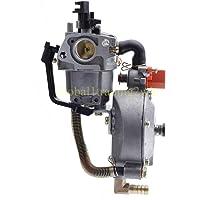 FidgetGear Carburador de Combustible Dual para Motor de 170 F Honda GX200