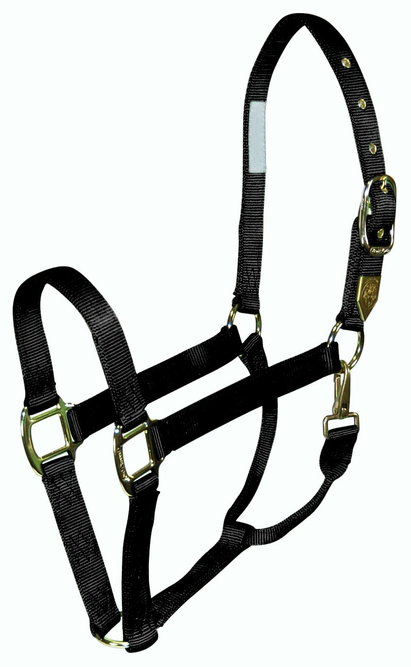 Hamilton 1-Inch Nylon Horse Halter with Throat Snap, Large, Black