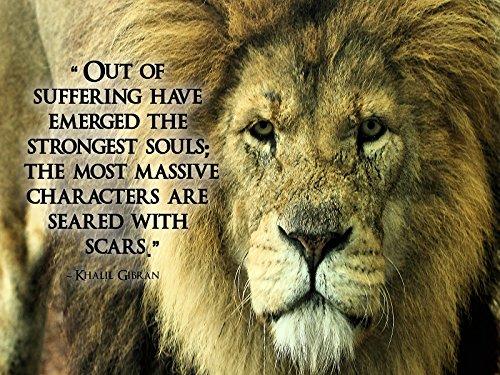 Inspirational Poster Motivational Lion