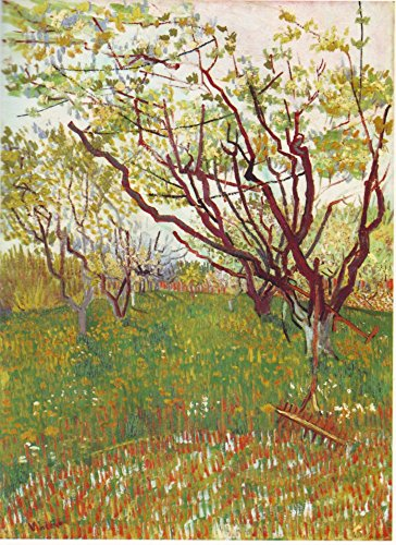 The Museum Outlet - Cherry Tree by Van Gogh - Poster Print Online Buy (30 X 40 Inch)