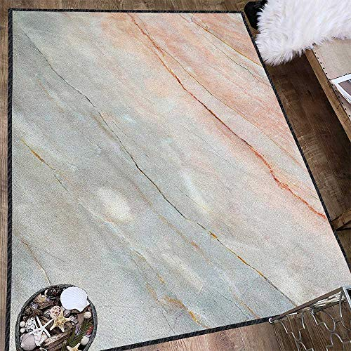 Marble Traditional Bright Area Rug,Onyx Stone Textured Natural Featured Authentic Scratches Artful Illustration Carpet for Children Home Decorate Peach Pale Grey 63