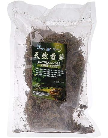 ecmqs espuma de terrarios – Reptile espuma de terrarios Natural tortuga espuma sustrato (decoración de