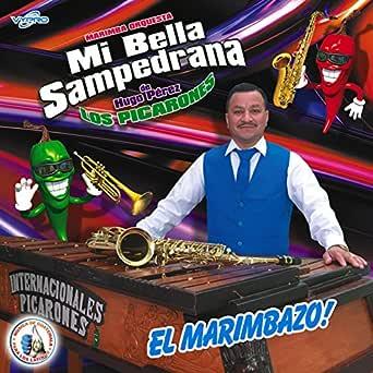 Cumbias Tropicaronas 7: Despeinada / Pelo Suelto de Marimba ...