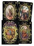 img - for Faery Godmother Oracle Cards book / textbook / text book