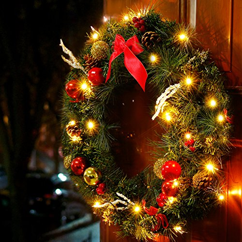 Valdler 22 Inch LED Lights Winter Wreath with Christmas Spruce, Silver Bristle, Cones, Ornaments,Red Berries Winter Snow Garland