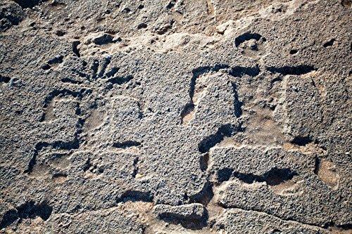 Hawaiian petroglyphs on sandstone along the shore of Keiki Beach, North Shore, Oahu, Hawaii print picture photo photograph fine art … (Sandstone Figure)
