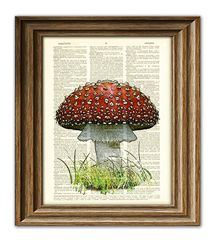 Red Mushroom Fly Agaric toadstool illustration beautifully upcycled dictionary page book art print ()