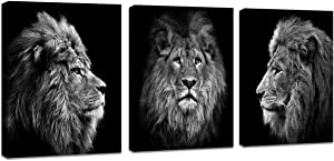 Muolunna BK0446 Wall art Black And White Lion Head Portrait Wall Art Painting Pictures Print 3 pieces Canvas Animal For Bedroom Living Room Office Wall Decor Home Decoration Framed Ready to Hang