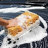 Dolland Car Cleaner Sponge Multipurpose Wash Absorbent Sponge 1 Pcs