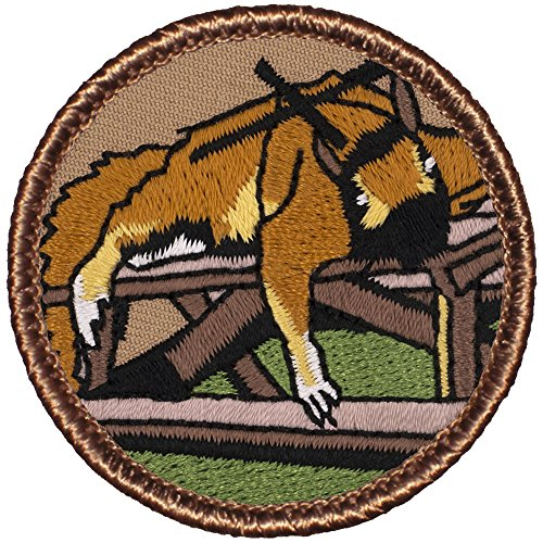 Lazy Ninja Squirrel Patrol Patch - 2