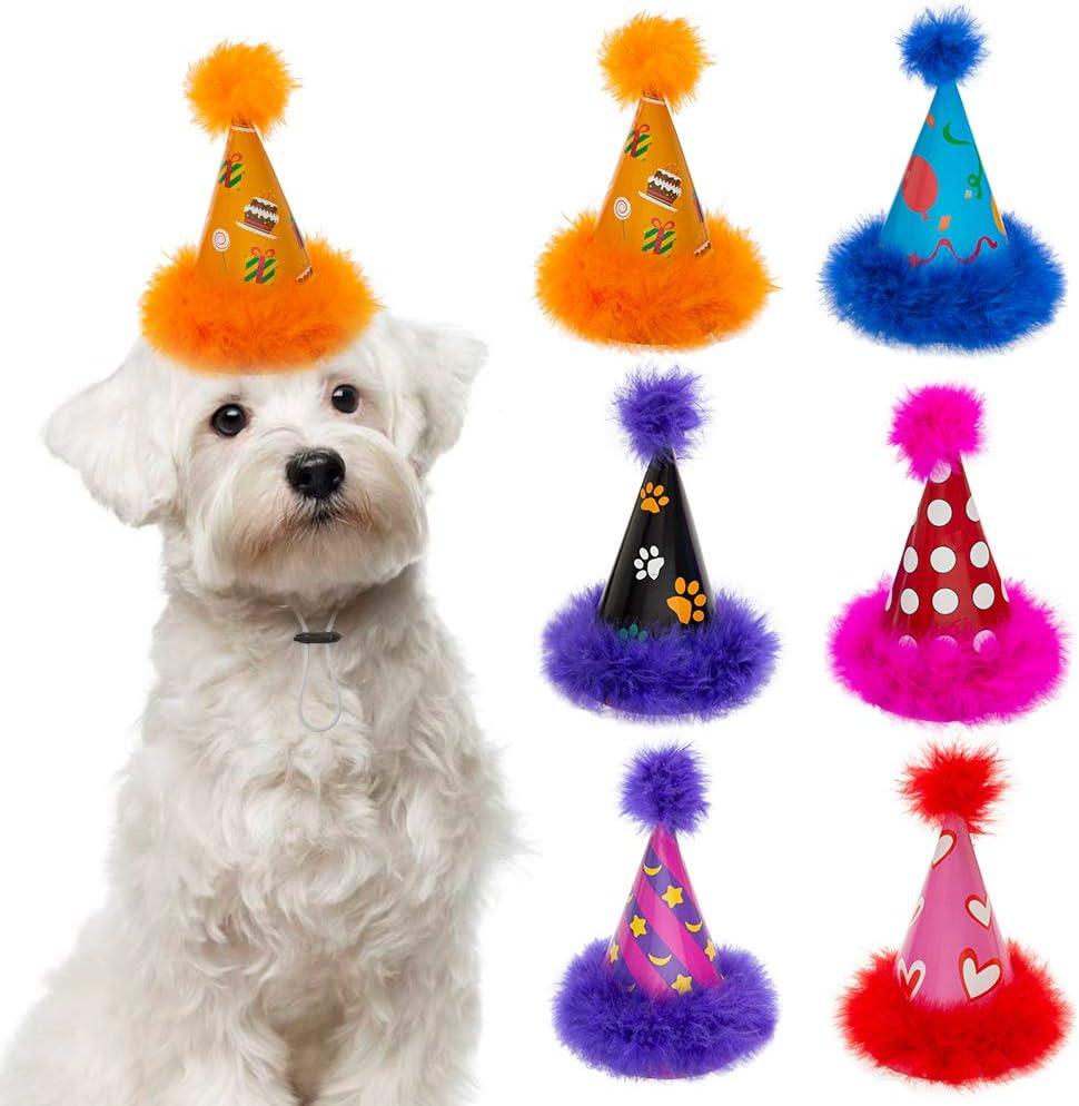 Amazon.com : Dog Party Hat 6 Packs