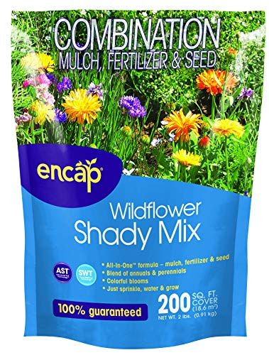 Wildflower Shady 4-in-1 Mix from Encap - 4-in-1 Mix, Annual and Perennial Seeds, Open-Pollinated, Non-GMO, with Instructions for Planting a Beautiful - Seed Mix One