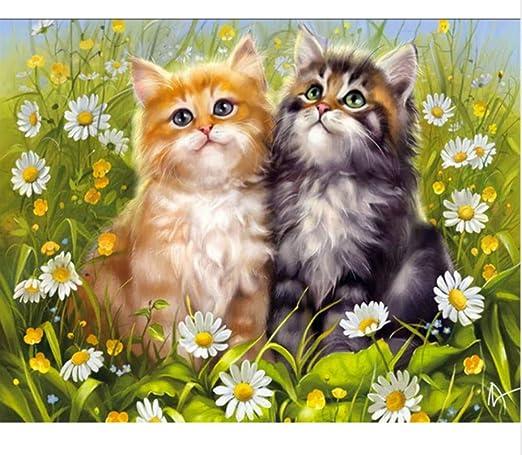 Puzzle 1000 Piezas Diy Cat Imagen Animales Gatos Diamant Puzzle ...