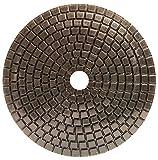 Alpha Ceramica Dry 4'' 200 Grit Polishing Pad