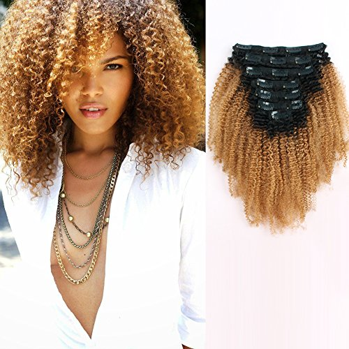 Beauty : AmazingBeauty 8A Grade 3C 4A Big Afro Kinkys Curly Ombre Hair Extensions Double Weft Real Remy Human Hair for African American, Natural Black Fading into Caramel Blonde Two Tone Color TN/27, 12 Inch