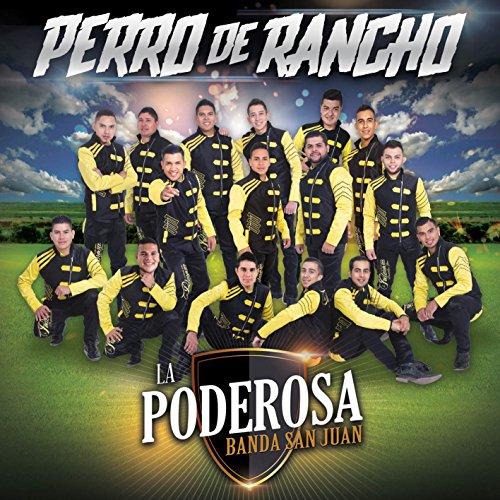 Perro De Rancho (Rancho Box Music)