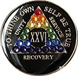 26 Year Black Rainbow Swarovski Crystal Tri-Plate AA Medallion Chip XXVI