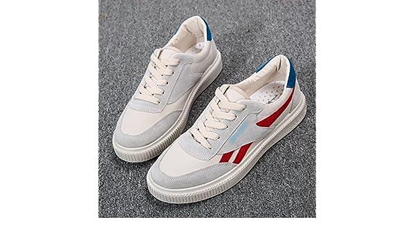 PengTaoHome Zapatillas Unisex Adulto Zapatos de Lona Masculina Estilo Coreano Baja Ayuda Salvaje Zapatos de Tablero Casual Harajuku Moda Verano Zapatos de ...