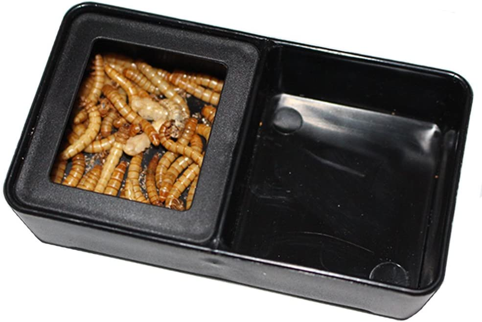 OMEM Worm Dish Mini Reptile Food and Water Bowl 2 in 1