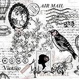 20 Servietten Poetie - Vintage Air Mail / Vogel / Old Fashion / Schmetterling 33x33cm