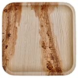 GREEN ATMOS 100 PACK - 10'' SQUARE PARTY/WEDDING DINNER BUFFET PLATE BIODEGRADABLE, COMPOSTABLE AND ECO-FRIENDLY DISPOSABLE ARECA PALM LEAF PLATES