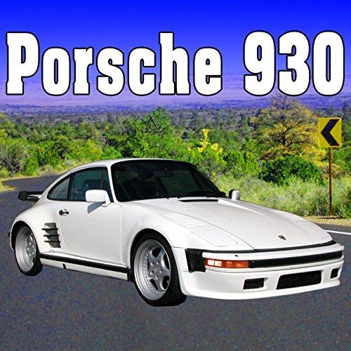 Porsche 930 Windshield Washers with Wipers Start, Run & Stop