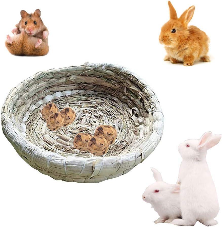 conigli gabbia porcellini dIndia criceti GZGZADMC 22 x 22 cm nido da masticare per animali domestici Letto portatile per animali di piccola taglia in erba intrecciata per piccoli animali