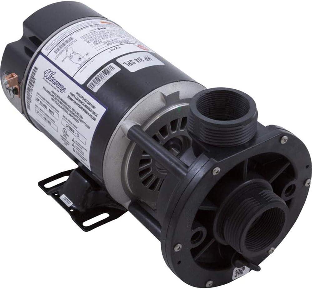 Waterway Plastics 3410310-15 3/4 hp 115V 1-Speed Spa Pump 1.5 inch Center Discharge