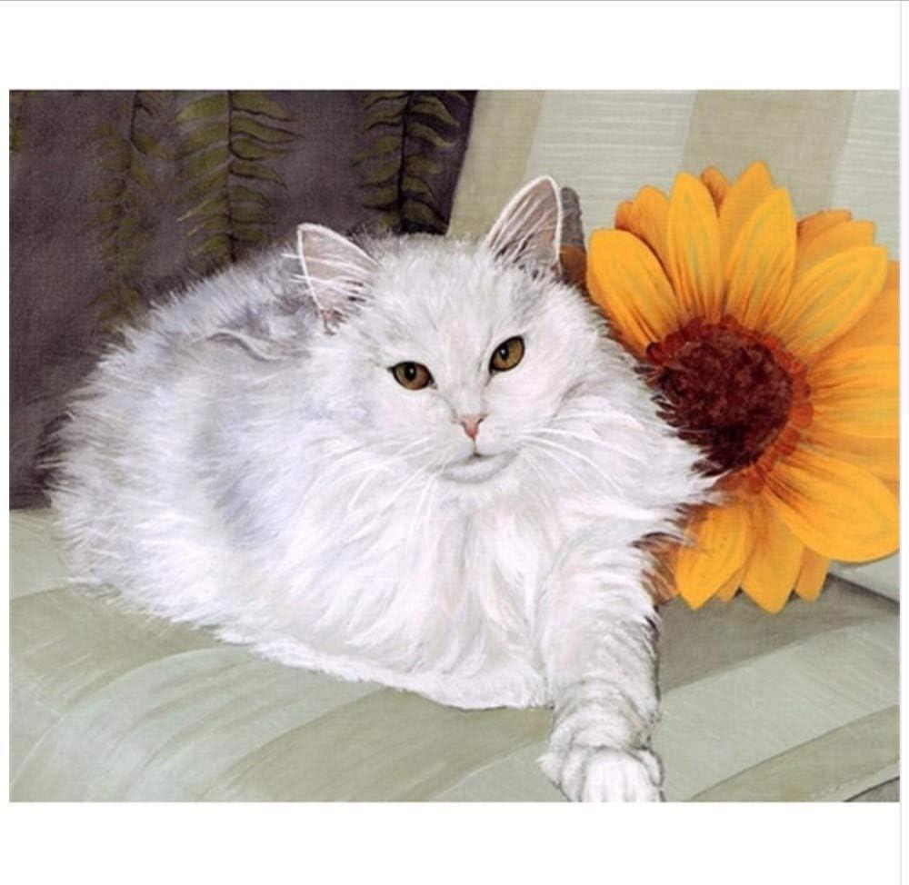 DIY Pintura Digital Por Números Grande Gordo Gato Blanco Pintura ...
