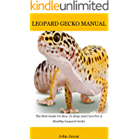 Leopard gecko: The Best Guide On How To Keep And Care For A Healthy Leopard Gecko