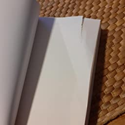 La bibliotecaria de Auschwitz eBook: Iturbe, Antonio G.: Amazon.es: Tienda Kindle