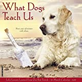 What Dogs Teach Us 2018 Calendar