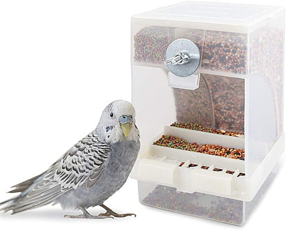 Racev Comederos Cobaya Comedero Jaula Pajaros Comederos para jaulas Claro alimentador de Aves Mealworm alimentador Pequeño pájaro