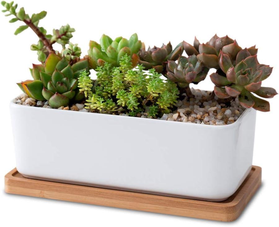 Succulent planter Planter Gift for her Indoor Pot Cactus Planter Birthday gift Concrete planter Concrete Succulent Planter