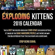 Exploding Kittens 2019 Wall Calendar
