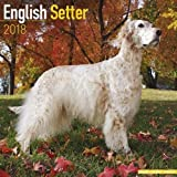English Setter Calendar - Dog Breed Calendars - 2017 - 2018 wall Calendars - 16 Month by Avonside