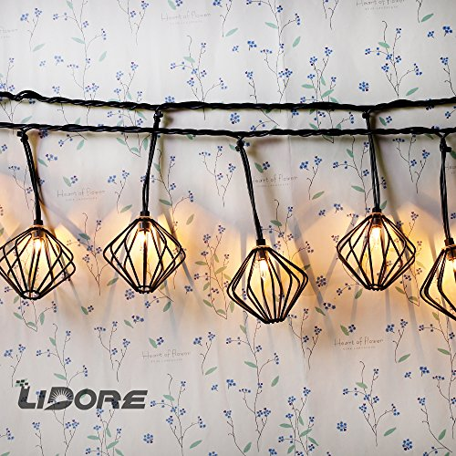 LIDORE DIAMOND 10 counts Decorative String Lights. String wrapped metal cage. Hollow out design.110V