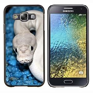 TECHCASE---Cubierta de la caja de protección para la piel dura ** Samsung Galaxy E5 E500 ** --Serpiente Azul Blanco cobra blanca Veneno