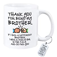 Funny Gifts for Brother If I Had A Different Brother I Would Punch Him In The Face...