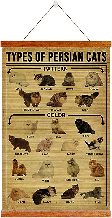 Types of Persian Cat Hanging Bamboo Scroll Inspirational Wall Art Decor Motivational Quotes Bamboo Blind Print Artwork Indoor Decoration for Home Dorm Office Ready to Hang