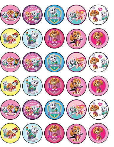 30 x Edible Cupcake Toppers - Paw Patrol Skye and Everest Themed Collection of Edible Cake Decorations | Uncut Edible Prints on Wafer Sheet