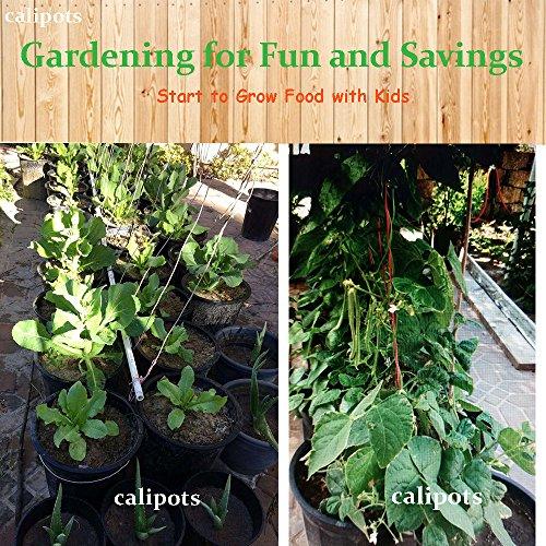 CaliPots 20-Pack 5 Gallon Premium Black Plastic Nursery Plant Container Garden Planter Pots (5 Gallon) by Calipots (Image #4)