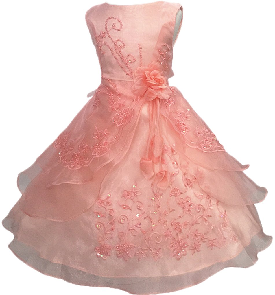 Shiny Toddler Little Girls Embroidered Beaded Flower Girl Birthday Party Dress with Petticoat 5t-6t(Tag 120),Peach