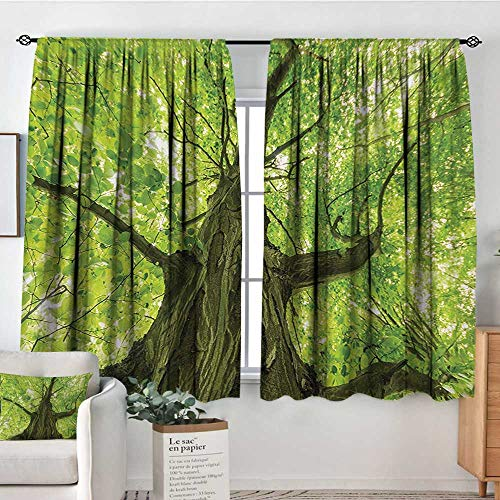 Elliot Dorothy Blackout Curtains Forest,Old Big Majestic Tree Environment Countryside Eco Solidarity National Park Scenery,Green Brown,for Room Darkening Panels for Living Room, Bedroom 42