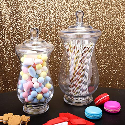 - Efavormart 2 Pack | Clear Glass Apothecary Jars Candy Buffet Containers with Lids for Wedding Party Favor Decor - 10