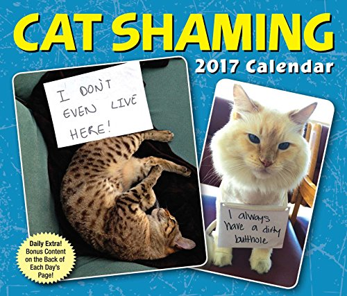 Cat Shaming 2017 Day-to-Day - Daily Off Calendar