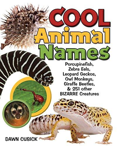 Cool Animal Names: Porcupine Fish, Zebra Eels, Leopard Geckos, Owl Monkeys, Giraffe Beetles, & 251 Other Bizarre Creatures ()